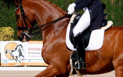 La alimentación y el ejercicio en los caballos de competición