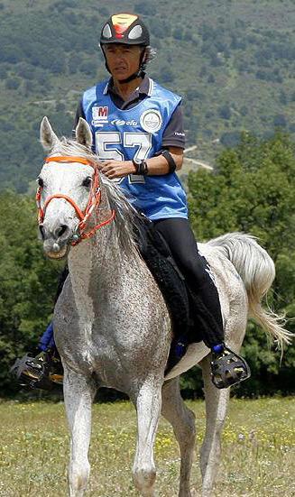 Felix Lorente participando en Raid con un caballo árabe