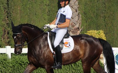 Sergio Martí, jinete de doma clásica y entrenador: el placer de entenderse con los caballos