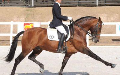 """Vanesa Ribes, jinete profesional y profesora de Clásica: """"El caballo es una forma de vida, mi vida"""""""