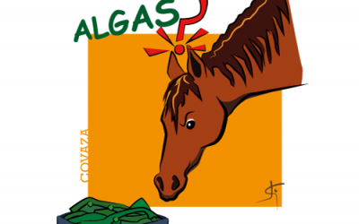 ¿Por qué microalgas y no algas en la nutrición del caballo?